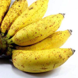 Chuối chà bột ăn khi chín, mùi rất thơm và ngon, nhiều công dụng về mặt y học và thẩm mỹ, nhiều chất dinh dưỡng