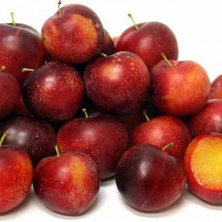 Mận Cherry có xuất xứ từ Mỹ, Đây là quả được lai tạo giữa Cherry và Mận nên quả có hình dáng của mận nhưng vị lại có vị ngọt mát của cherry. Mận cherry có vỏ đỏ, ruột vàng, tuy vỏ có vị chua của mận nhưng cắn quả lại có vị ngọt mát của cherry. Vị chua không gay gắt, vị ngọt không quá sắc, nên mận Cherry hấp dẫn được nhiều người. Đây là một sản phẩm mới lạ và bổ dưỡng, thích hợp dùng trong gia đình, tiệc hay làm quà biếu.